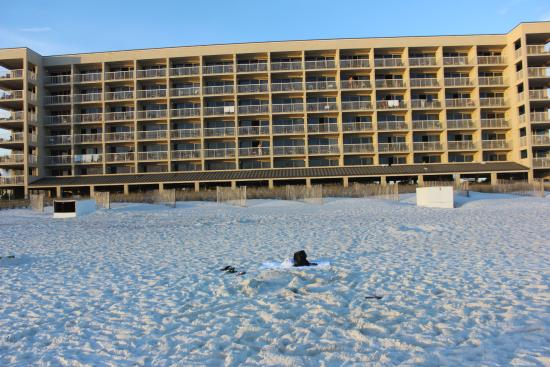 Four Points by Sheraton Destin- Ft Walton Beach: Hotel from the beach