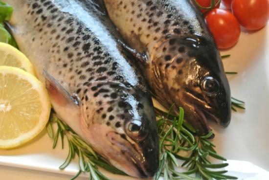 Fischzucht Ertl -Essen Am Forellenhof-