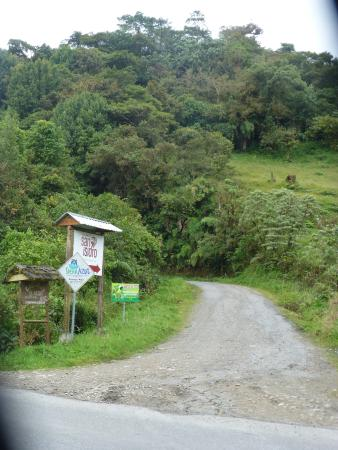 Cosanga, Ecuador: Access road (great birding!)