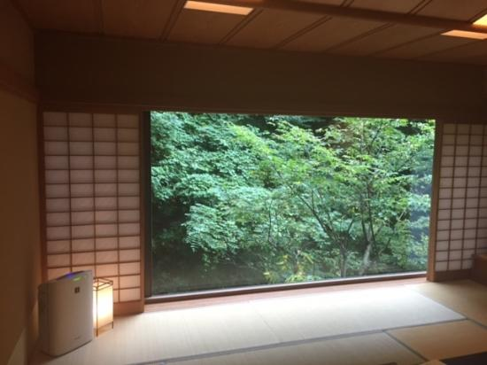 Ashigarashimo-gun, Japón: 客室
