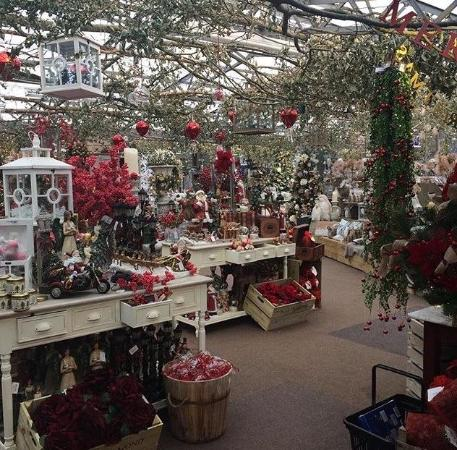 Grosvenor Garden Centre: Christmas displays