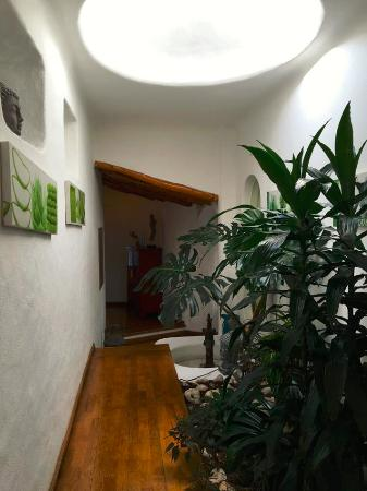 Morada do Sol: Natural light-filled hallway with plants