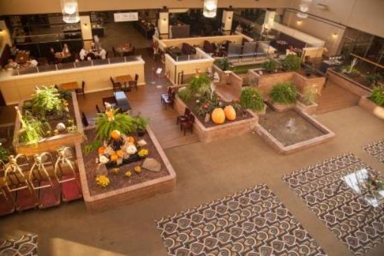Medicine Hat Lodge Resort, Casino & Spa: Lobby