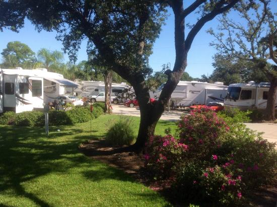 Majestic Oaks Rv Resort 2018 Prices Campground Reviews