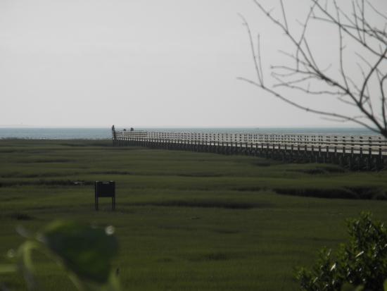 Yarmouth, MA: 海に伸びるボードウォーク