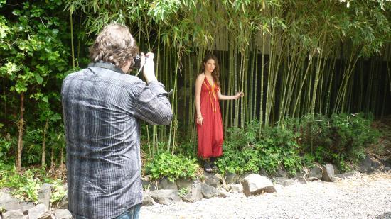 jardin japones sesin de fotos