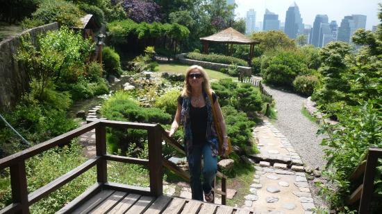 jardin japones dentro del jardn japons