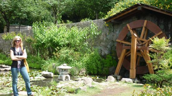 Foto de jardin japones santiago molino de agua tripadvisor for Jardin japones de santiago