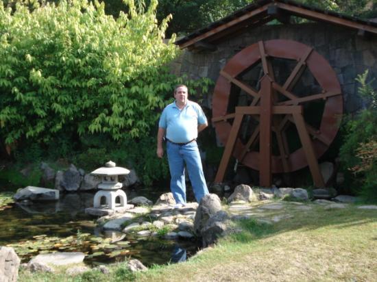 Molino de agua picture of jardin japones santiago for Jardin japones de santiago