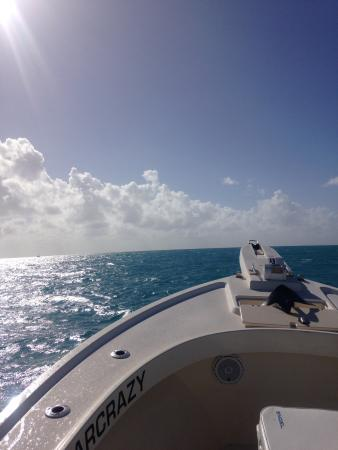 Captain Hook's Marina & Dive Center: photo1.jpg