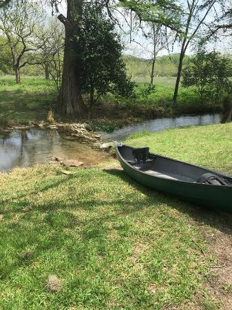 Frio Springs Lodges: Toodling around on a kayak in the Springs