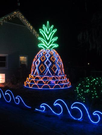James Island County Park: Best new light exhibit- Pineapple