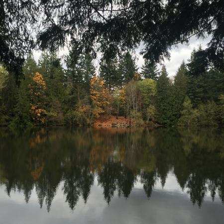 Nanaimo, Canadá: Вид с возвышен