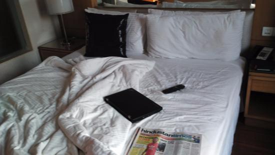 The Fern Residency: Room
