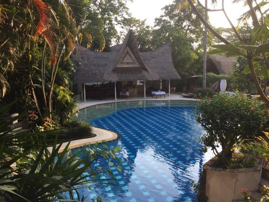 Kupu Kupu Barong Villas and Tree Spa Photo