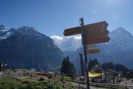 Гриндельвальд, Швейцария: Signs for walking trails at Bolt