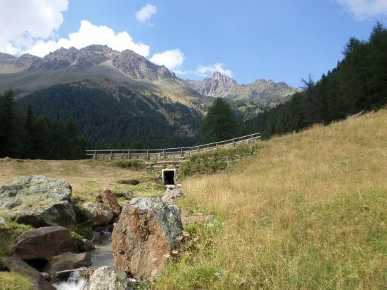 Sole Valley, Włochy: appena su da Pejo
