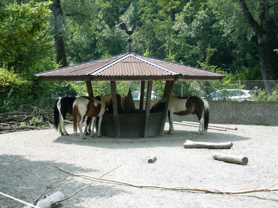 Orgi-E kone Arken zoo