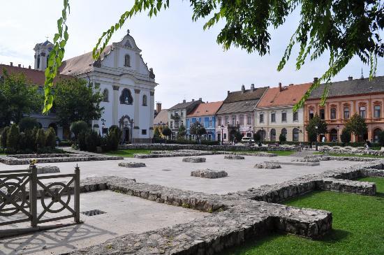 Vac, Ungern: Контуры собора Святого Михаила