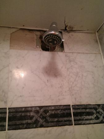 The Townhouse: Tiles fallen off and not replaced
