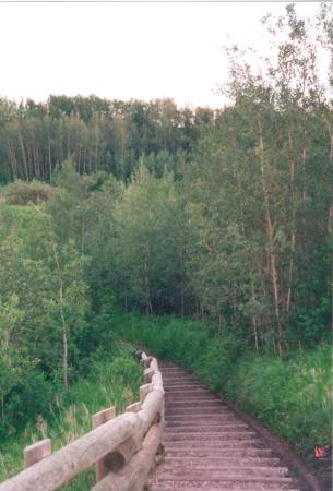 Grande Prairie, Canada: Hiking the trails