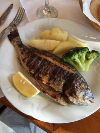 Sucuraj, Croacia: Yummy fish!