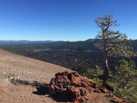 Mineral, Califórnia: photo8.jpg