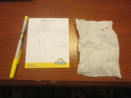 Days Inn Kent - Akron : Bedbugs in the Room!