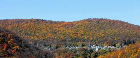 Whitehurst Bed & Breakfast: Fall Foliage