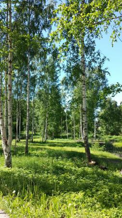 Motala, Sverige: 20130610_113409_large.jpg