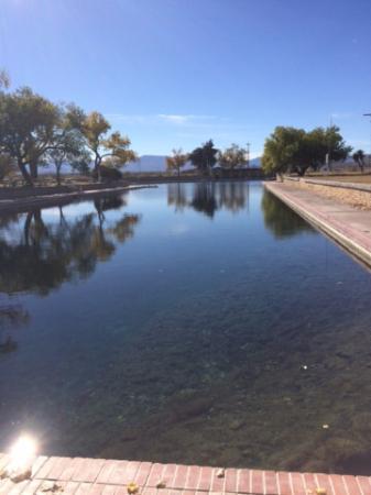 Toyahvale, TX: Springs/Pool