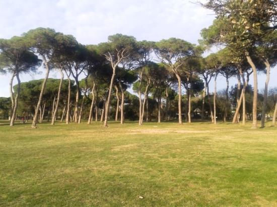 Parque de l'Hostal Del Fum