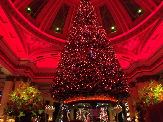 The best xmas tree ever - Picture of The Dome, Edinburgh - TripAdvisor