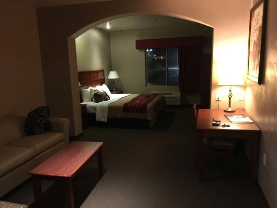 Comfort Inn at Convention Center: View of room from door