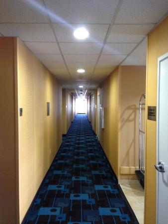 Fairfield Inn Las Cruces: Hallway