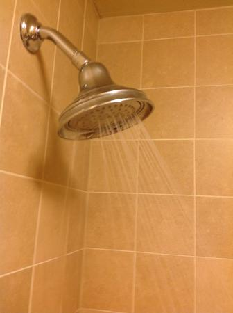 The Elevation Hotel U0026 Spa: Shower Head Barely Working(water Shooting All  Over Me
