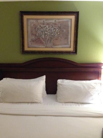 هوليداي إن إكسبريس هوتل آند سويتس: Bed was clean and comfortable