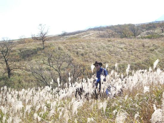 Yumedaichi Green Valley
