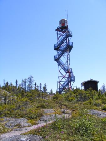 Glovertown, Kanada: Lookout tower