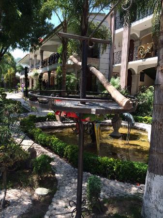 Hotel Villa Florencia : Garden birds