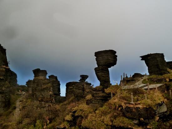 Tongren, الصين: on top ( mushroom rock)
