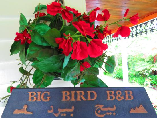 Waitomo Big Bird Bed & Breakfast照片