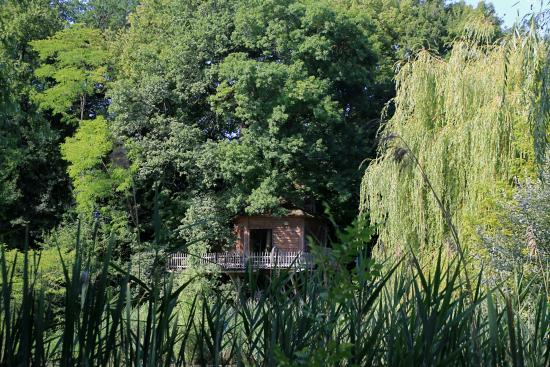 Monmarves, France : The treehouse from across the pond