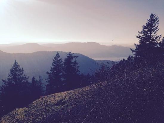 Eastsound, واشنطن: Mountain view.