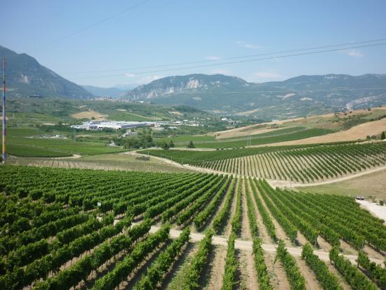 Bolognano, Włochy: Art et vin