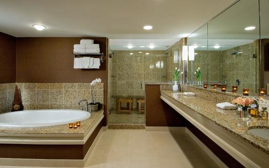 DoubleTree by Hilton Chicago - Arlington Heights: Presidential Suite Bathroom