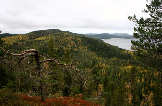 Koli National Park, Finland: A view from Mäkrävaara Hill towards Ukko-Koli