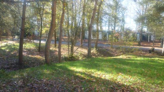 vue Photo de Center Parcs Les Bois Francs, Verneuil sur Avre TripAdvisor # Center Parc Bois Franc Avis