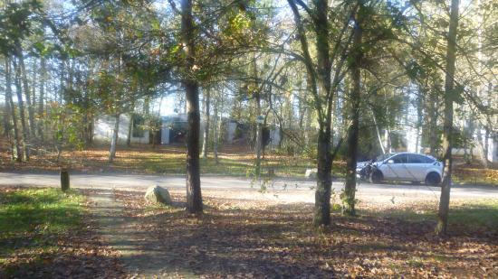 Avis Center Parc Les Bois Francs - vue Photo de Center Parcs Les Bois Francs, Verneuil sur Avre TripAdvisor