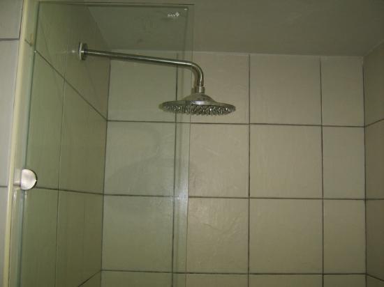 Queen Victoria Inn: shower
